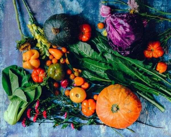 fruits and vegetables lack from the normal diet, but are within a trainer's scope of practice to recommend.