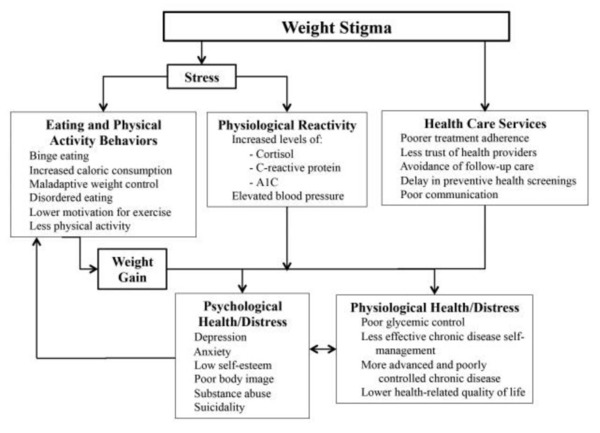 Diagram outline the effect of weight stigma